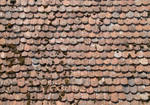 Roof Texture - 1
