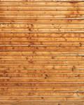Wood Texture - 29