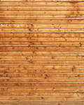 Wood Texture - 29