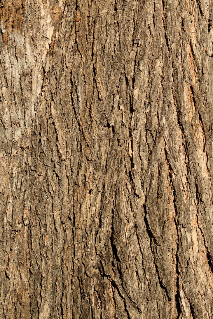 Image Result For Free Minecraft Tree