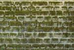 Stone Texture - 28