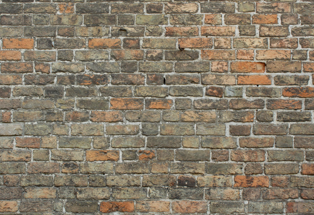 Brick Texture - 43 by AGF81