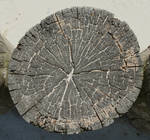 Wood End Texture - 10