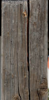Wood - D623