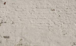 Wall - D655