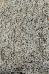 Stone Close-up - D670