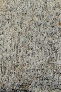 Stone Close-up - D670