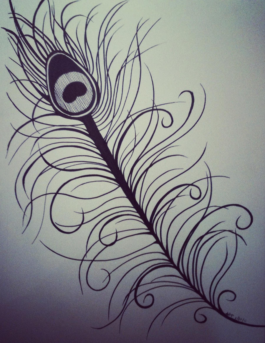 Abstract Peacock Feather Drawing Peacock feather by
