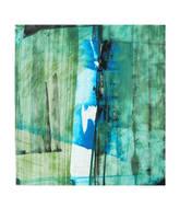 Blue Corana by Don-de-chocolate