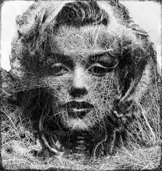 Ghost of a cyborg - marilyn