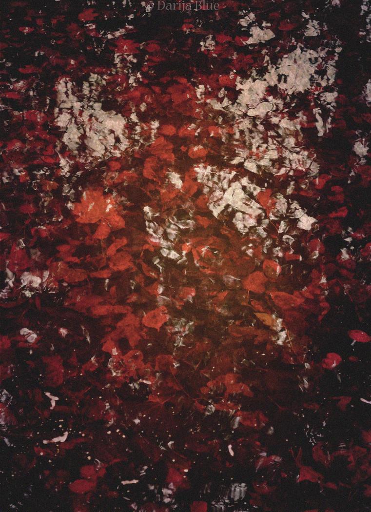 dust of yesterday's roses by Darija9
