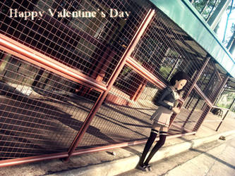 Happy Valentine's Day by Mikeinel