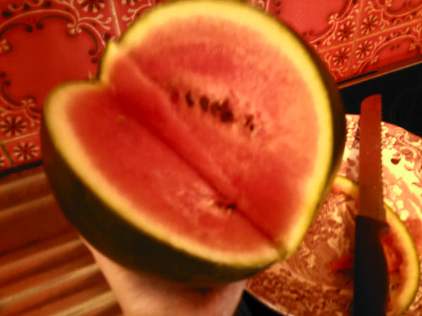 Melon by Milk-Melon