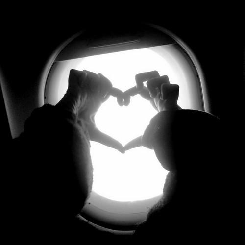 My heart on a plane by citr0n