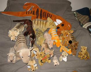 Plush Thylacine Familt by t-subgenius