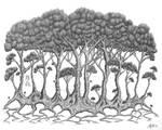 The Grove Tree