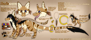 Sebeon Reference Sheet - 2013