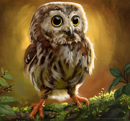 Me is cute owl by ElbenherzArt