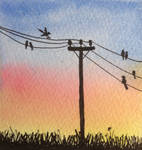 Birds On The Wire World Watercolour Month Day 14 by MontyMouse