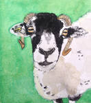 Love Ewe World Watercolour Month Day 19 by MontyMouse