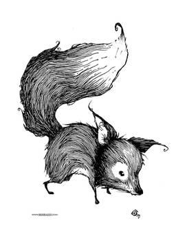 kind of fox