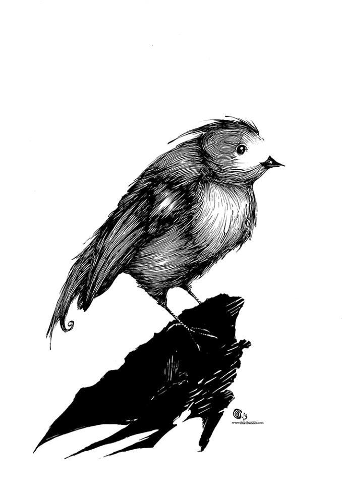 Bird by BenBASSO