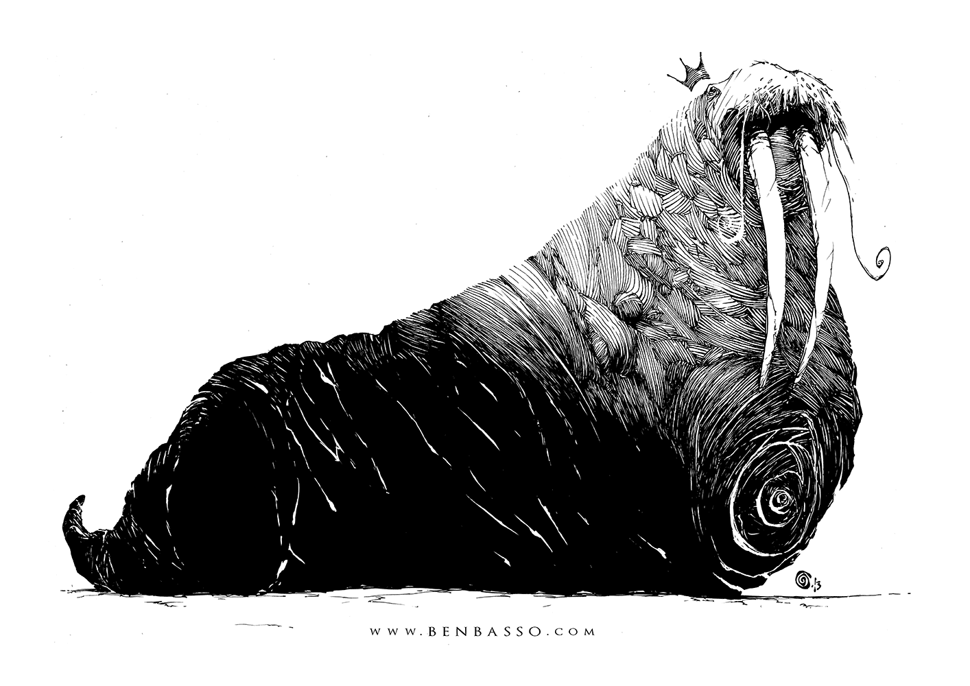 Walrus by BenBASSO on DeviantArt