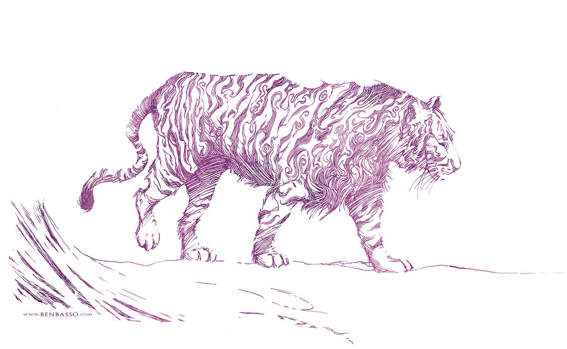 Tiger by BenBASSO