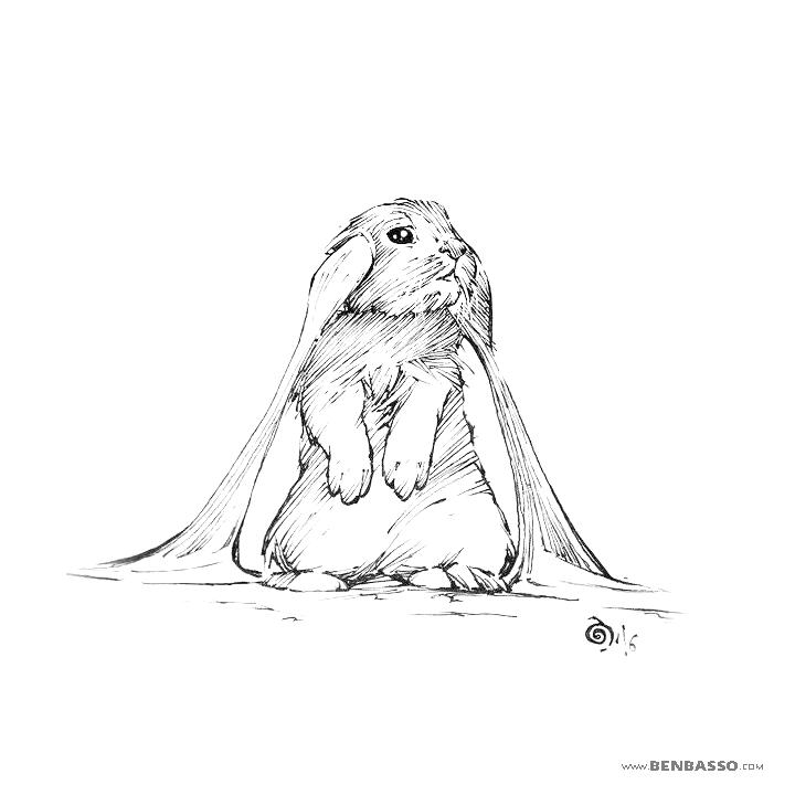 Rabbit by BenBASSO