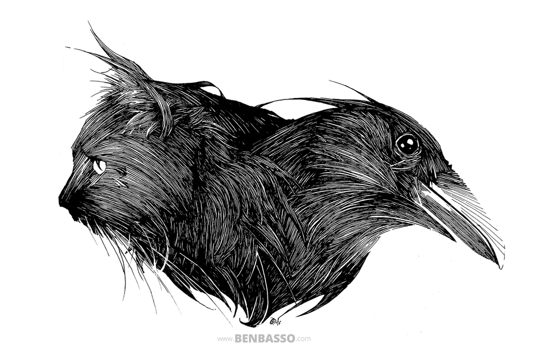 The Raven and the Cat by BenBASSO