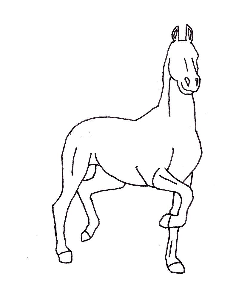 Trotting Horse Line art by purapuss on DeviantArt