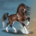 HArpg Sfinaria - Arabian Mare