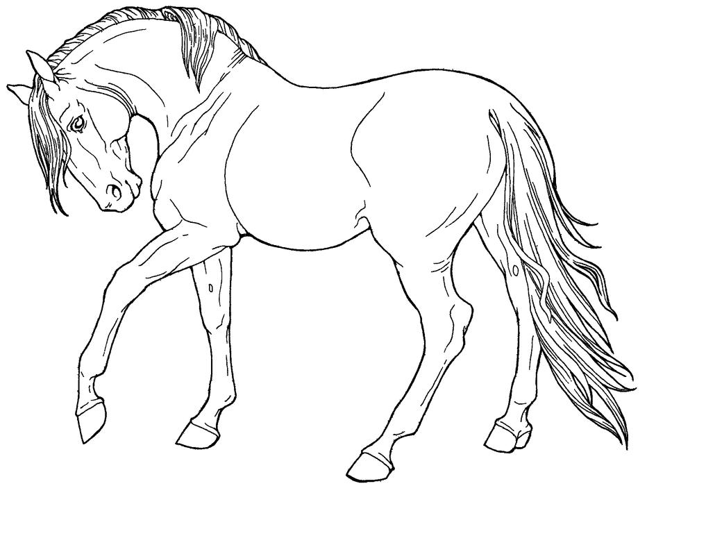 Free line art fine horse by applehunter on deviantart for Disegno di un cavallo da colorare
