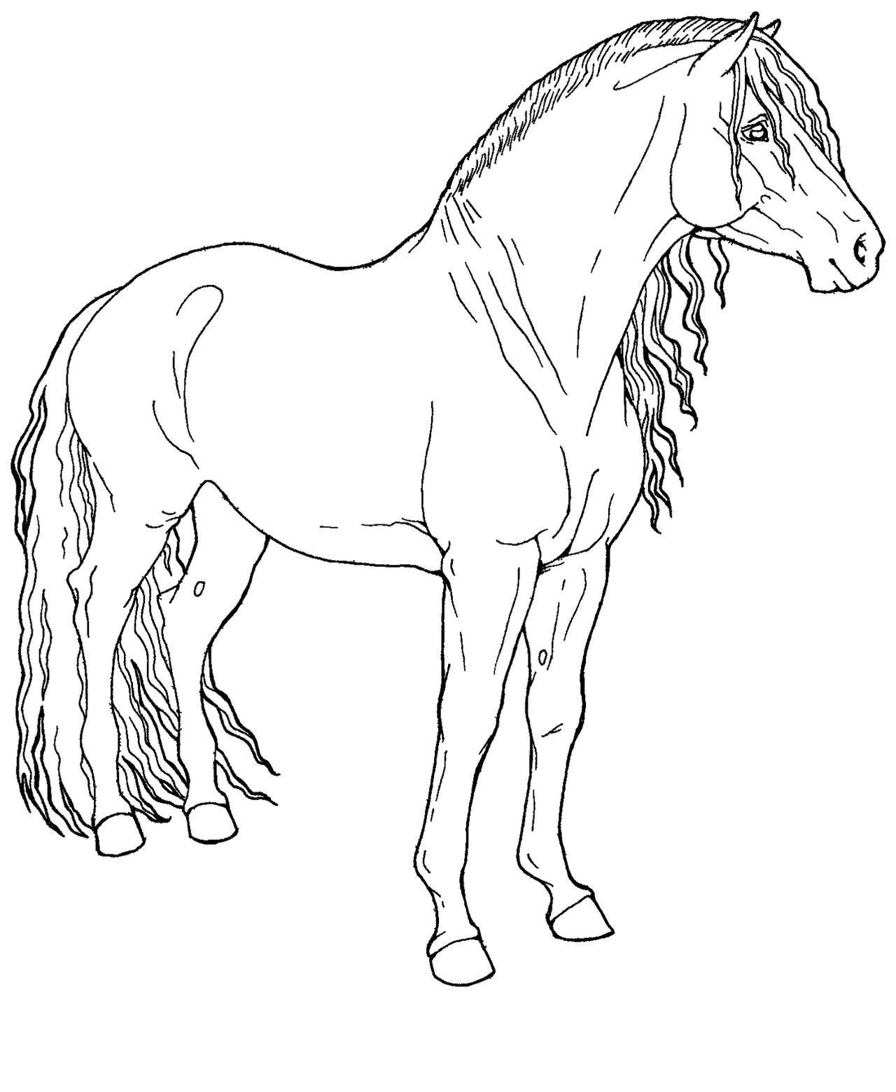 Image Result For Draft Horse Coloring