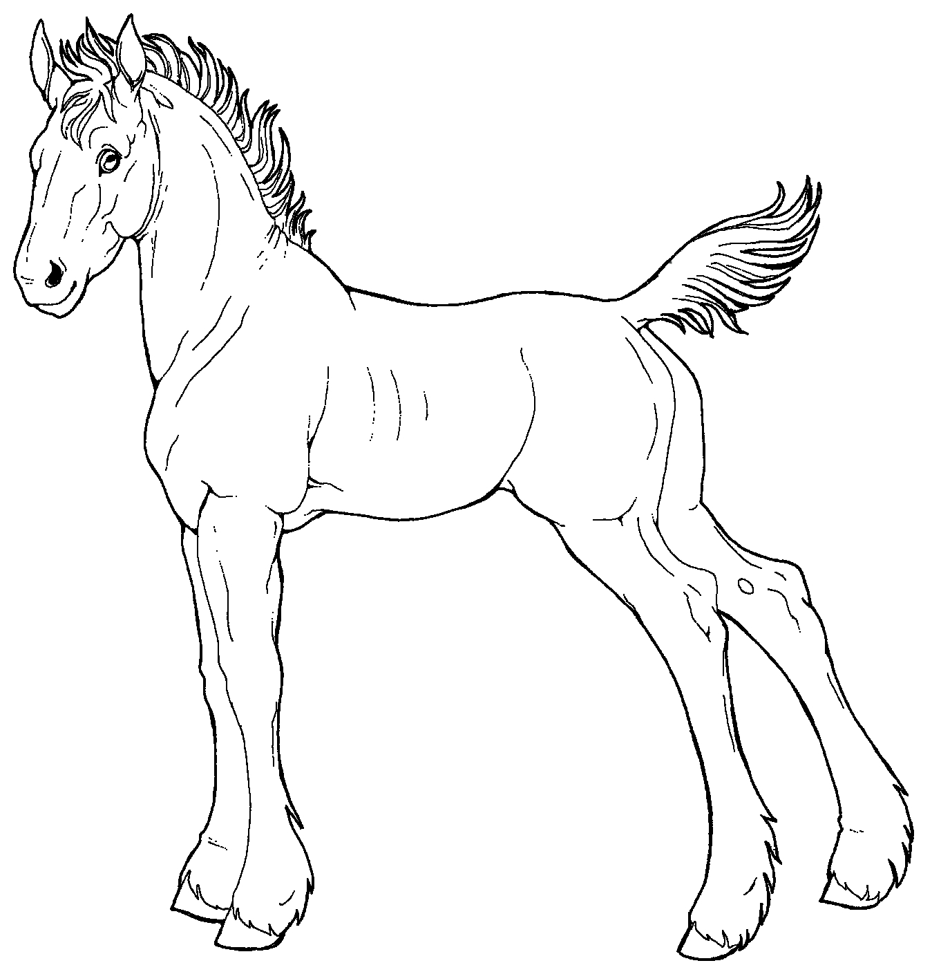 Coloring Pages Cowgirl Riding Horse