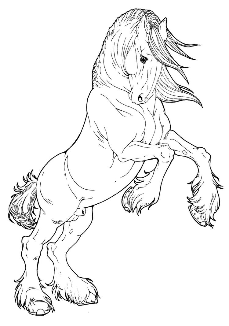 Printable Line Drawings Of Animals : Clydesdale stallion by applehunter on deviantart