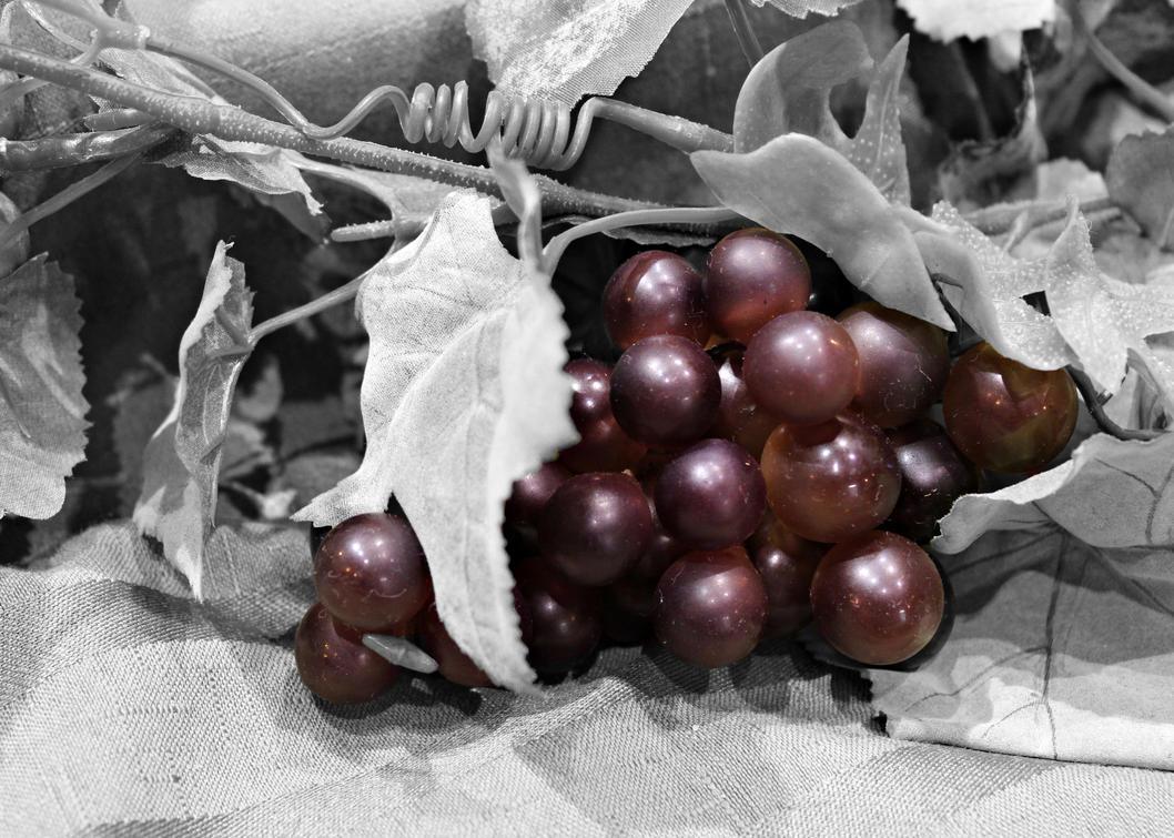Yummy Grapes by xBlazingPinkDragon