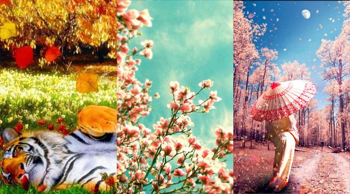 spring by janinatju