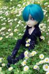 Majesty in flowers
