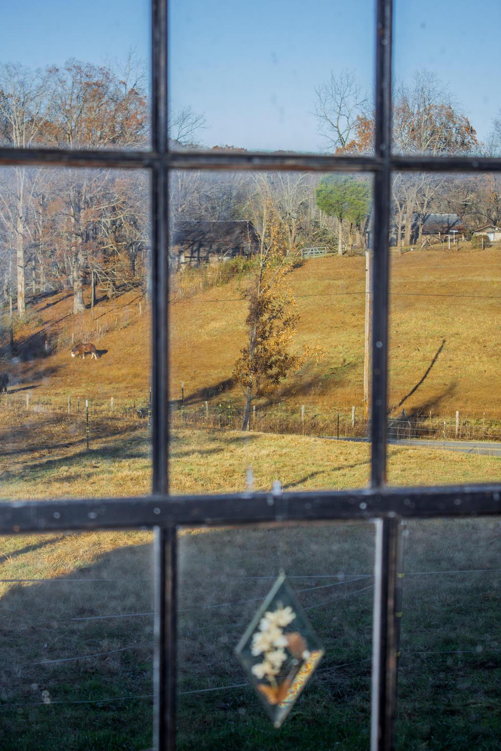 Farm Through a Window by DeadLetterDesign