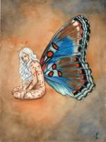 Limenitis Arthemis fairy