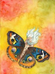 Junonia Coenia Fairy