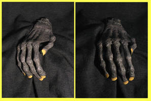 Mumified Hand