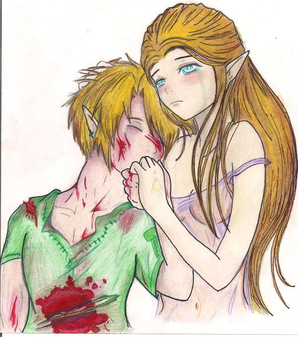 zxl the pain that hurts us by zelda x link