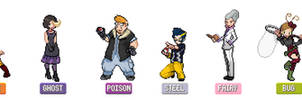 Gym Leaders of Biritz Region by Pkmn-Dusk-Red