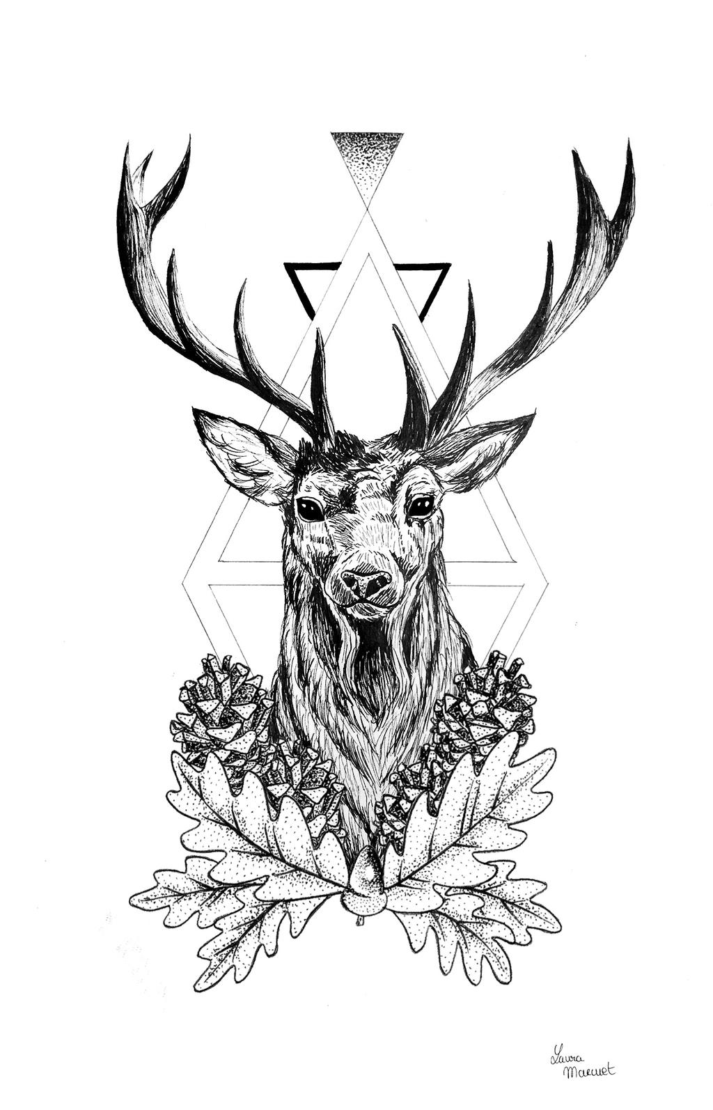 Deer by lauramarcuet