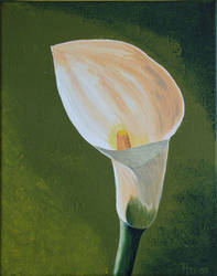 Calla by from-art-to-art