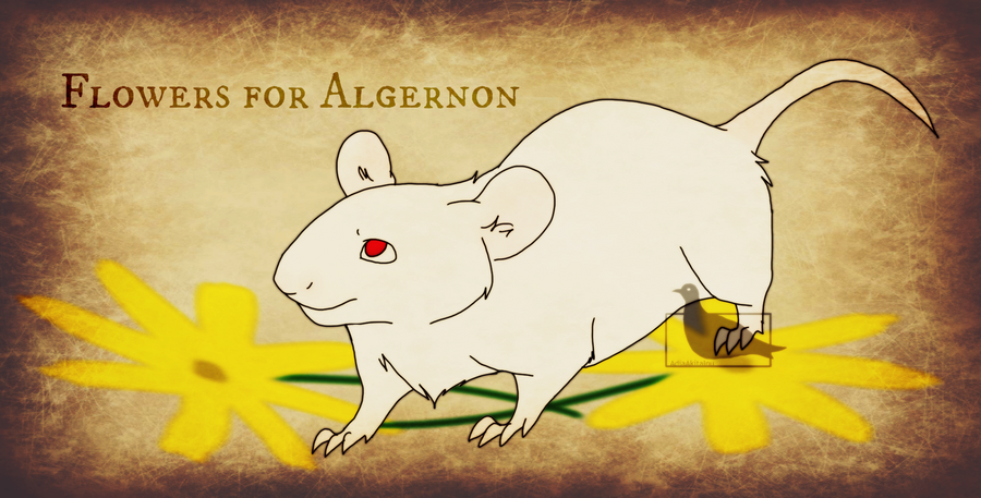 """flowers for algernon creative paper Creative project—""""flowers for algernon"""" with your """"intelligence"""" group this paper is due at the end of class attach additional paper if necessary."""