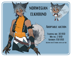 ADOPT: Norwegian Elkhound (CLOSED)