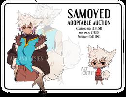 ADOPT: Samoyed